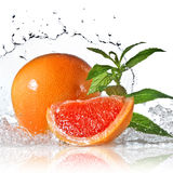 Water splash on grapefruit with mint isolated Stock Image