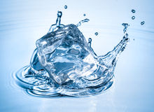Water splash with ice cube Royalty Free Stock Photography