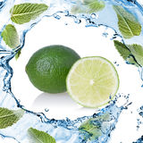 Water splash with lime and green mint isolated on white Royalty Free Stock Photos