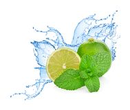 Water splash on lime with mint isolated on white Stock Images