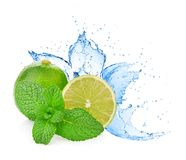 Water splash on lime with mint isolated on white Royalty Free Stock Photography