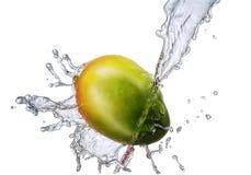 Water splash with mango isolated Royalty Free Stock Photography