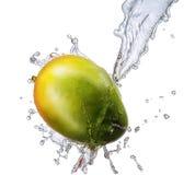 Water splash with mango isolated Royalty Free Stock Images