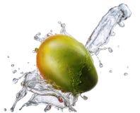 Water splash with mango isolated Stock Photos