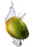 Water splash with mango isolated Royalty Free Stock Photos