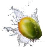 Water splash with mango isolated Stock Photo