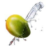 Water splash with mango isolated Royalty Free Stock Image