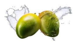 Water splash with mango isolated Stock Image