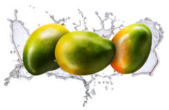 Water splash with mango isolated Royalty Free Stock Photo