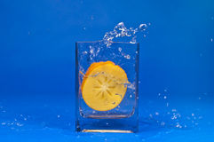 Water splash - orange persimmon fruit on blue background Royalty Free Stock Photos