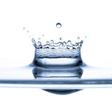 Water splash over white background Stock Photo