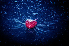 Water splash with raspberry. Water splash with red raspberry Stock Images