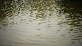 Water Splash ! stock video footage