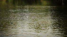 Water Splash ! stock footage