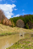 Water splash in spring nature landscape Stock Image