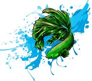 Free Water Splash With Fish Around. Vector Illustration. Royalty Free Stock Images - 213949269