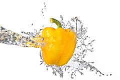 Water splash on yellow pepper Royalty Free Stock Photos