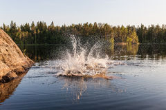 Water splashes in a forest lake Stock Photos