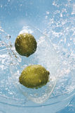 Water splashing on fresh limes Stock Images
