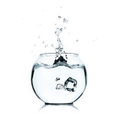 Water splashing from glass on white Stock Photo