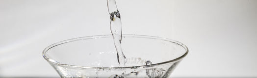 Water splashing from glass. On white background royalty free stock photography