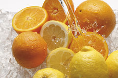 Water splashing on oranges and lemons Stock Image