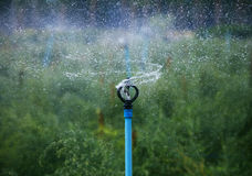 Water splashing from outdoor cultivated agriculture farm sprinkler royalty free stock photo