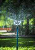 Water splashing from outdoor garden sprinkler use for freshness Stock Photo