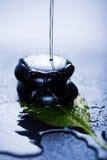 Water splashing over zen stone on leaf Stock Photos