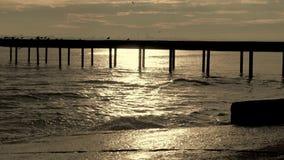 Water splashing and pier stock video