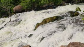Water splashing on the rocks and stones. River stream rapidly flowing over cascade in nature. Water splashing on the rocks and stones. Wild mountain river in stock video footage