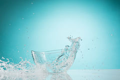 The water splashing to glass bowl on white background. The water splashing inro glass bowl on white background royalty free stock photography