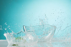The water splashing to glass bowl on white background. The water splashing inro glass bowl on white background royalty free stock images