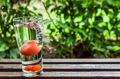 Water splashing and tomato in the glass of water on nature backg Stock Photo
