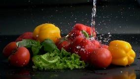 Water splashing on vegetables in slow motion stock footage