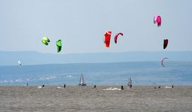 Water sports. A lot of colored kiters on the lake stock images