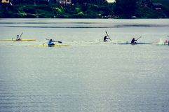 Water sports image, people rowing in canoe on river royalty free stock photo
