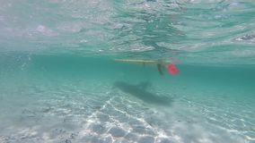 Water sports: slow motion passage of a white stand up paddle board taken from underwater in the crystalline sea with the shadow of. The shape reflected on the stock video footage