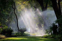 Water sprau amd light in public park Stock Images