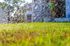 Water spray on the grass backbround Royalty Free Stock Image