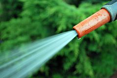 Water spraying from a garden hose. To water a lawn. To water a grass on a lawn royalty free stock image