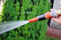 Water spraying from a garden hose. To water a lawn. To water a grass on a lawn stock images