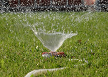 Water sprays from watering sprinkler on the lawn stock image stock photos