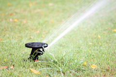 Water spread out from the Sprinkler of garden equipment Stock Photography
