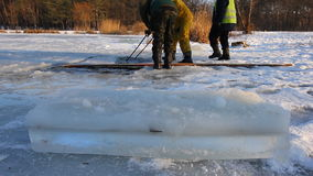 Water spreads around as ice is being sawn for ice sculpture with a powerful chainsaw at a frozen lake on February stock video
