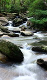 Water spring. A water spring in forest Royalty Free Stock Photography