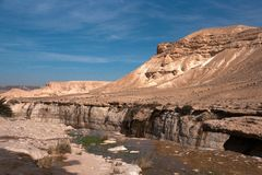 Water spring in a desert Stock Image