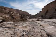Water spring in a desert Royalty Free Stock Images