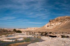 Water spring in a desert Stock Photos