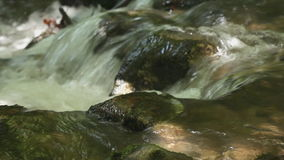 Water spring in high mountains - closeup stock video